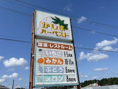 第1回あみだ会「浜松いちご狩り~やりたいこともできないこんな世の中なんだし、たまにはいいよね~」